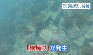 海洋危機①-2