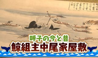 kujiragumi (1)