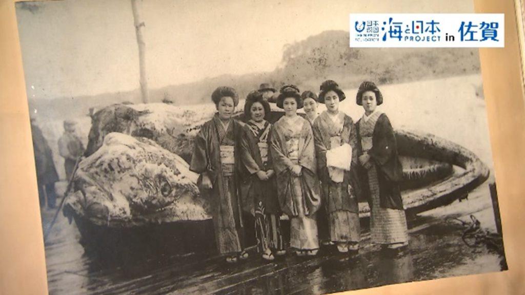 kujiragumi (4)