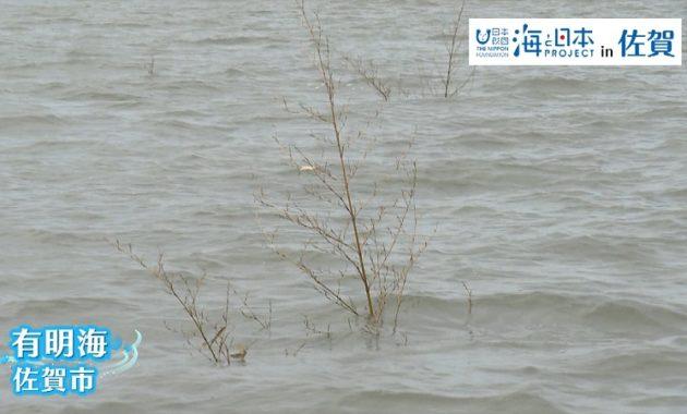 佐賀県-A・29-s01
